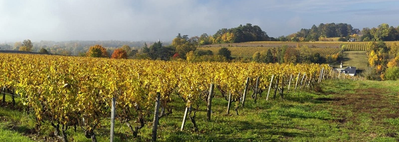 Chateau Gaudrelle, Vouvray wines - Rochecorbon, France.