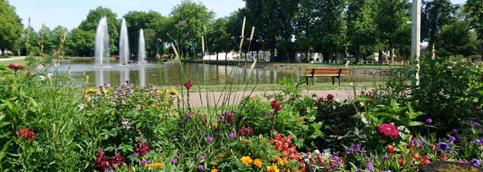 sologne aire camping car lamotte beuvron