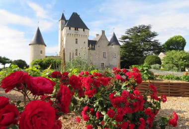 Rose festival - Loire Valley